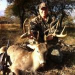 """Brady Texas 165"""" Buck"""
